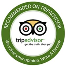tripadvisor-logo-11